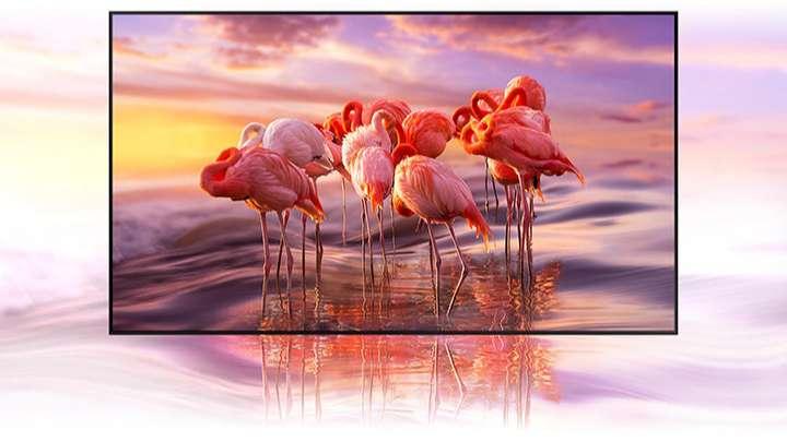 Tivi Samsung 55 inch Q65T - Hiển Thị Chính Xác Tỷ Sắc Màu